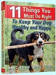 dog care and feeding book