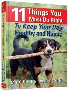 11 things you must do right to keep your dog healthy and happy 11 things you must do right to keep your dog healthy and happy cover fandeluxe PDF