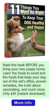 dog health care book