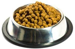 Best Large Kibble Dog Food