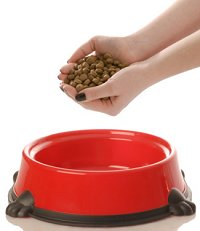 Feeding a Dog Dry Dog Food - You Need to Know the Danger of Fillers
