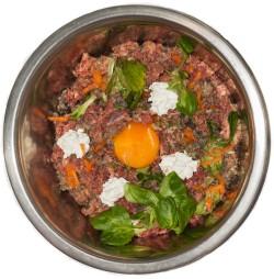 Feed Your Dog Healthy Food